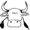 :COW: